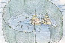 三重県の漁法