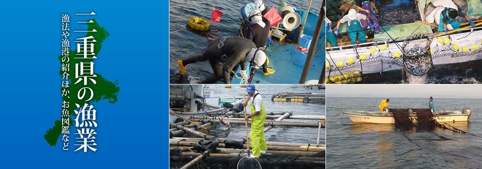 三重県の漁業