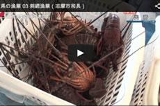 三重県の漁業 03 刺網漁業(志摩市和具)【動画】