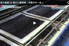 三重県の漁業 04 黒のり養殖業(伊勢市今一色)【動画】