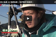 三重県の漁業 06 巻網漁業(南伊勢町奈屋浦)【動画】