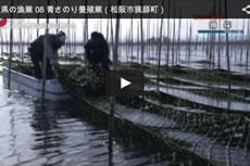 三重県の漁業 08 青さのり養殖業(松阪市猟師町)【動画】