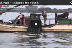 三重県の漁業 11 採貝漁業(桑名市赤須賀)【動画】