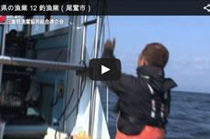 三重県の漁業 12 釣漁業(尾鷲市)【動画】
