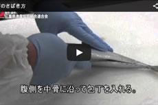 カツオのさばきかた【動画】