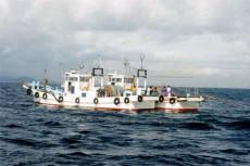 三重県 浜の声:ばっち網漁業