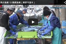 三重県の漁業 13 敷網漁業(熊野市遊木)【動画】